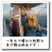 一実丸で獲れた新鮮な魚介類は絶品です!