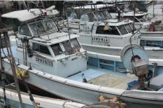 漁師宿だから採れたて海産物を調理します!